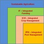 SA-IF-ICM-IPM-Cube