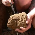 FARRE soil